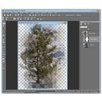 Using layer masks in PaintShop Pro