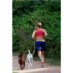 woman and dogs running