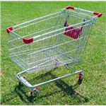 Shopping Cart on Green Grass