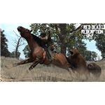 Red Dead Redemption Animals Grizzly Bear