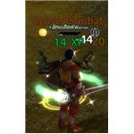Runes of Magic MMORPG Dual Class 2