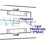 windbelt-magnet-and-coils