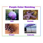 Purple preschool printable color flash card