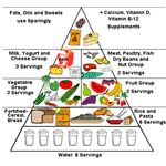 Preschool Theme Healthy Body - food pyramid ohsu.edu