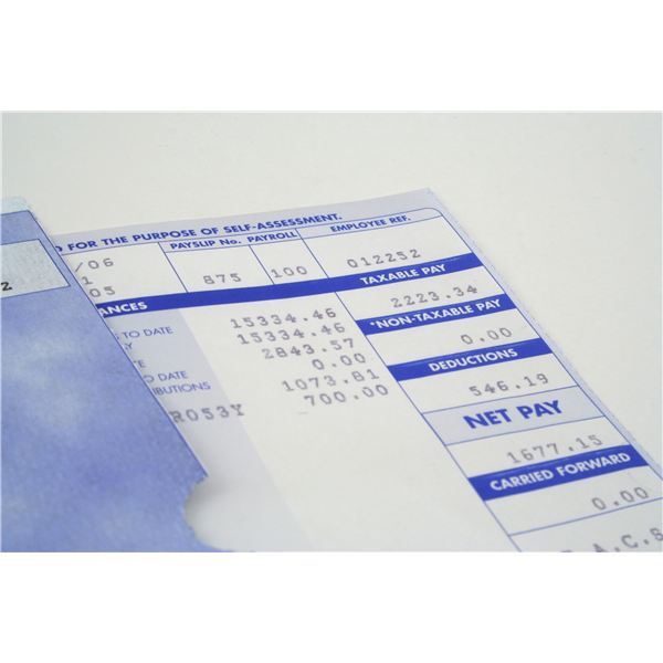 Different Kinds of Pay Stubs: You May Need Paper and Electronic Stubs