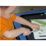 Preschooler learning about beans by The Little House (Montessori)/Wikimedia Commons (GNU)