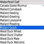 Waterfowl call - Bird Hunting app -Blackberry -pic