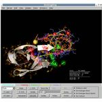 Molecular Modeling: Docking