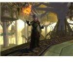 An Elven Runekeeper