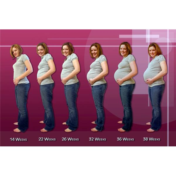 Poor Nutrition During Pregnancy Effects