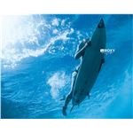 surfer-under-water-10