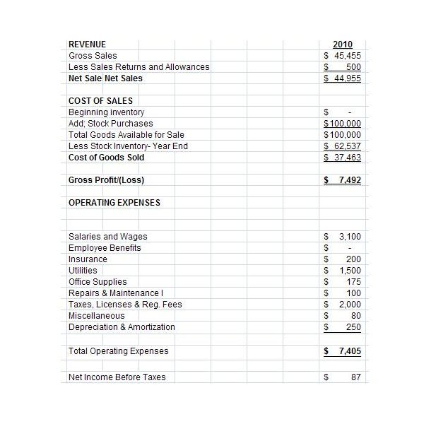 Free Downloadable Excel Pro Forma Income Statement for Small and – Generic Income Statement