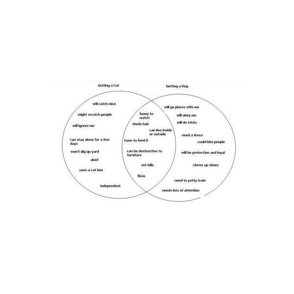 Writing an essay from a venn diagram