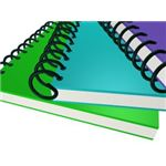 Homeschooling your grade school student can be easier if you follow these tips