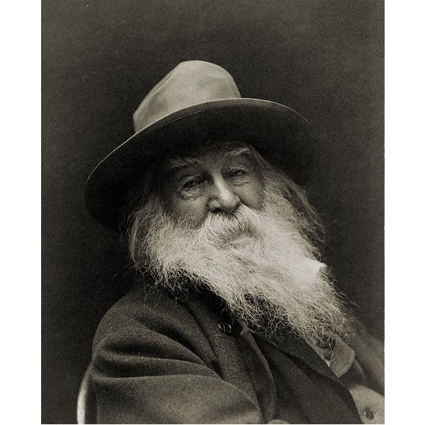 walt whitman critical essays The essay walt whitman's 'song of myself' – a review of critical evaluation focuses on three evaluations that may help in appreciating the poem and the poet.