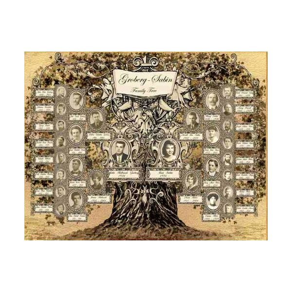 Family Tree Design Ideas wonderful design ideas of family tree wall decals splendid design family tree wall Design Ideas Family Tree Preview2
