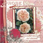 rosescrap