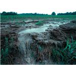 800px-Runoff of soil & fertilizer