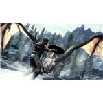 Skyrim Dragon Fighting