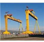 Samson & Goliath Cranes
