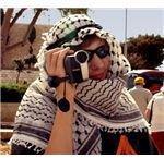 Image by lisasolonynko (Morguefile.com)