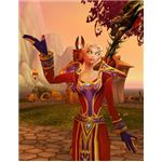 Blood Elf Mage