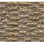 Multi-Texture Carpet