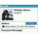 Windows Live Messenger Mobile App