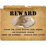 Reward: Wanted Poster Template
