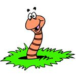 Clipart Worm