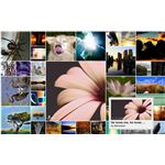365 project examples