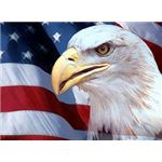 patriotic-backgrounds-eagle-flag