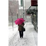 386px-FEMA - 30487 - Woman with an umbrella in a Portland snow storm