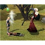The Sims Medieval death and the Grim Reaper