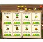 zl market-farming