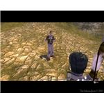 Fable Lost Chapters - Worried passer-by