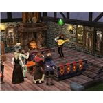The Sims Medieval Bard Playing Lute