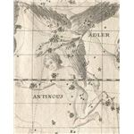 Constellation Aquila The Eagle