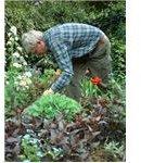 gardener mprowe sxchu