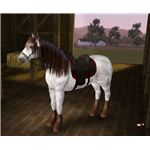 The Sims 3 horse