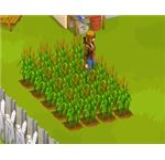 zl crops