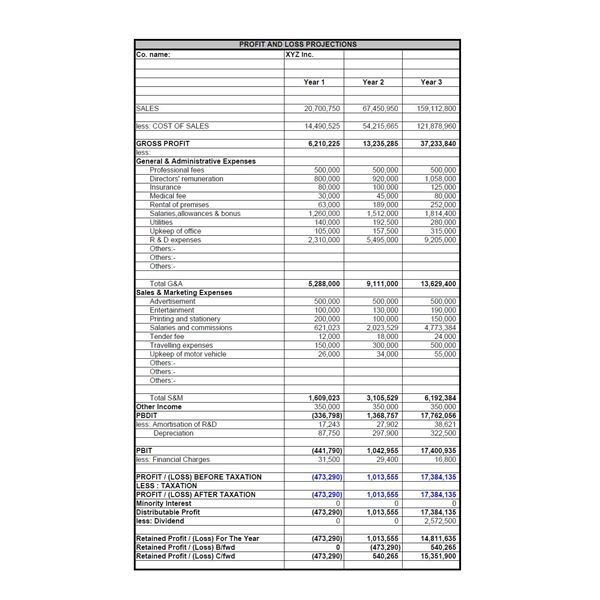 Profit And Loss Projections · Projected Balance Sheet  Profit Loss Sheet