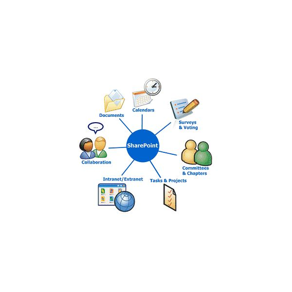sharepoint online for dummies pdf