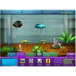 Business Simulation Games - FishCo