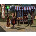The Sims Medieval Merchant with Customer
