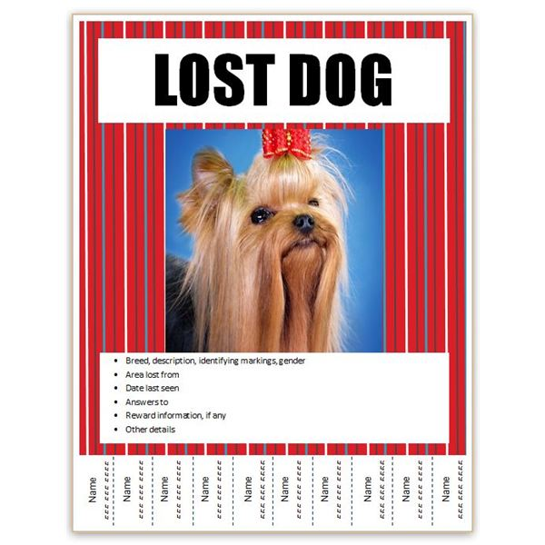 missing pet flyer template free