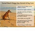 Doggy Daycare Postcard