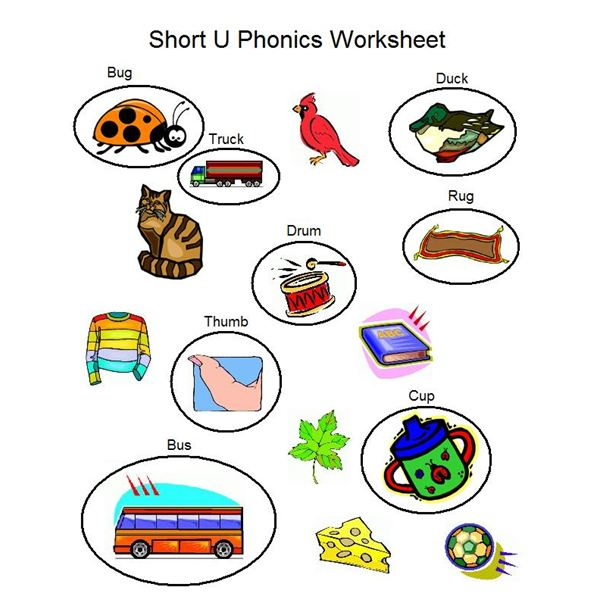 Teaching Preschoolers About the Short U Sound – Phonics Worksheets for Kindergarten Free