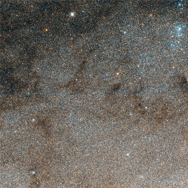 Stars Like Dust - Andromeda Galaxy Closeup