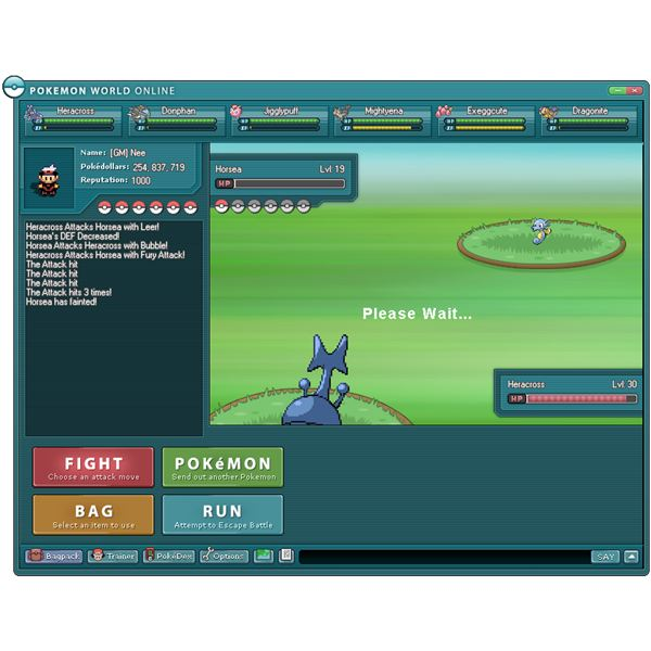 Pokemon Computer Game